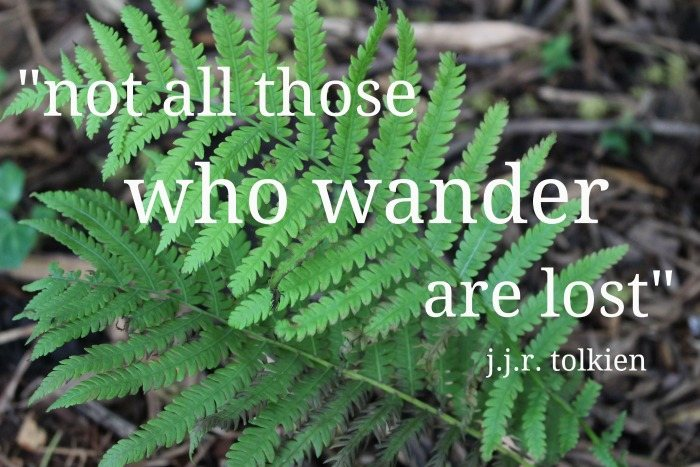Spring ferns with quote