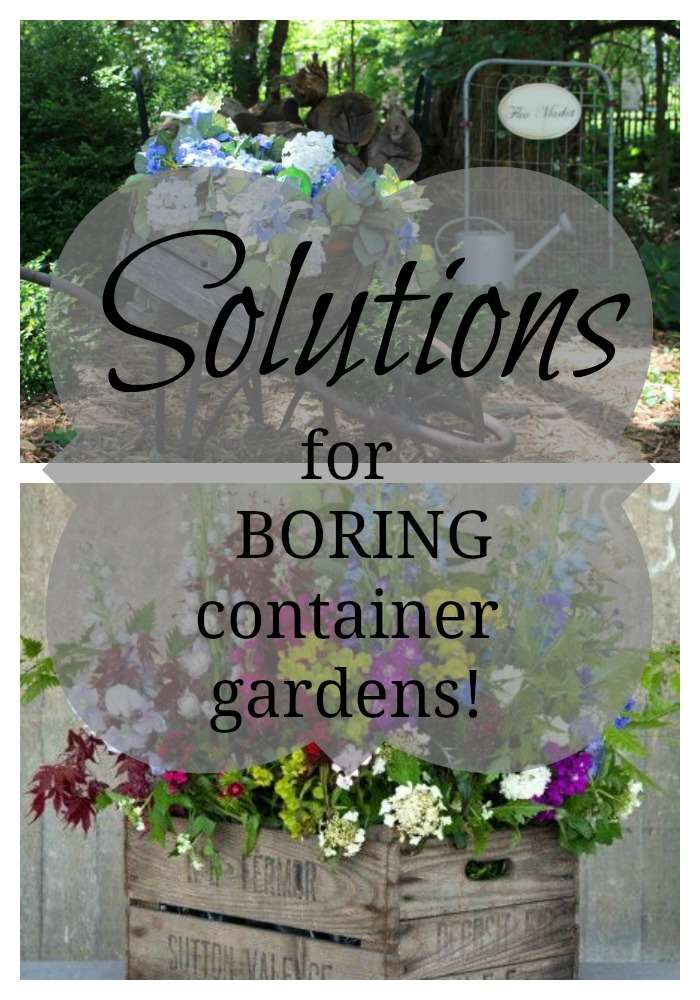 Container gardening solve so many logistic problems