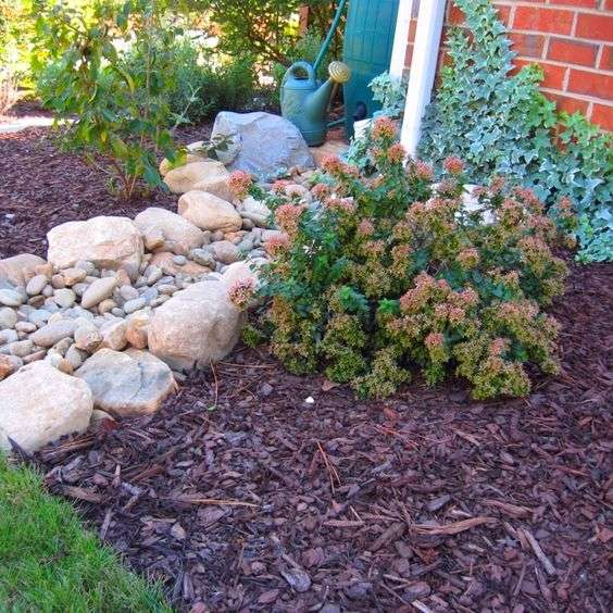 Dry Creek Beds Solving Garden Problems Designing Wilder