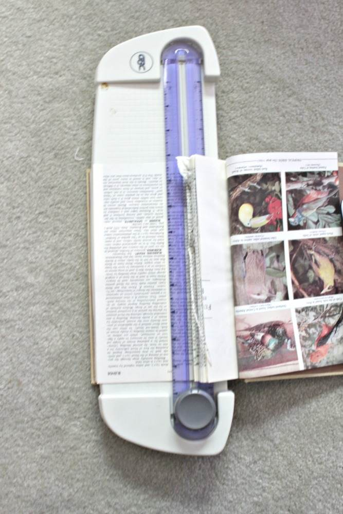 Grape vine wreath, old encyclopedias and scapbooking scissors along with a little elbow grease become a lovely book page wreath!